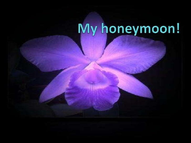 My Honeymoon!