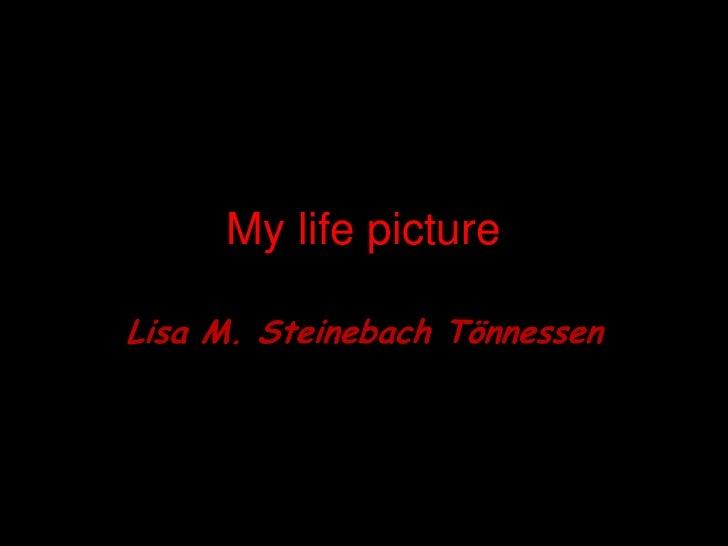 My lifepicture<br />Lisa M. SteinebachTönnessen<br />