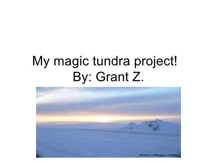 My Magic Tundra Project!