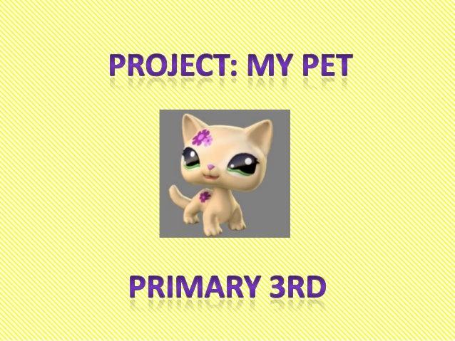 My pet 3º