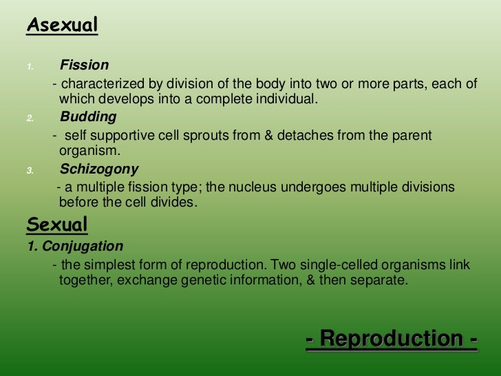 conjugation the reproduction process of single celled organism Kingdom monera - all the organisms of the kingdom monera includes organisms that are single-celled known as bacteria sexual reproduction is by conjugation.