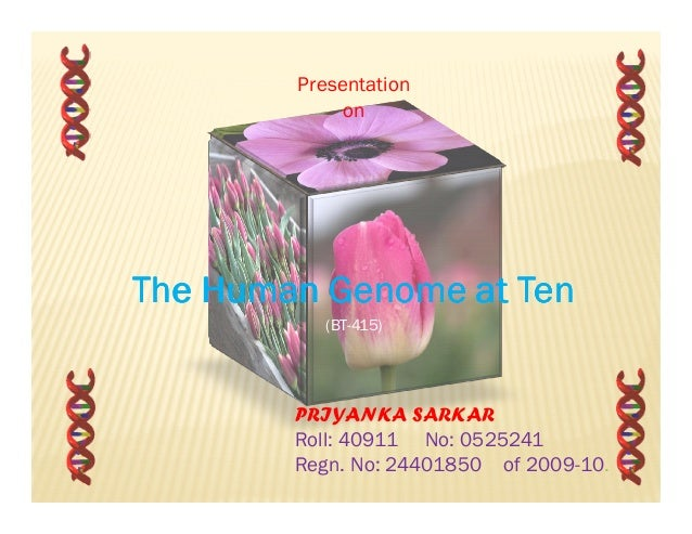 Presentation on  The Human Genome at Ten (BT-415)  PRIYANKA SARKAR Roll: 40911 No: 0525241 Regn. No: 24401850 of 2009-10.