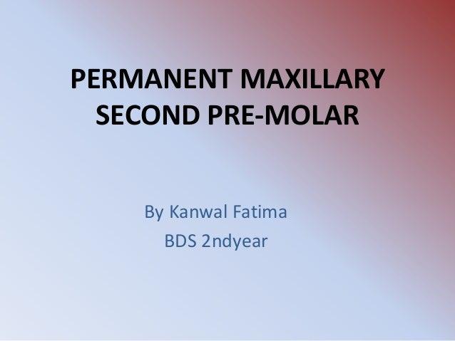 My presentation maxilary premolar