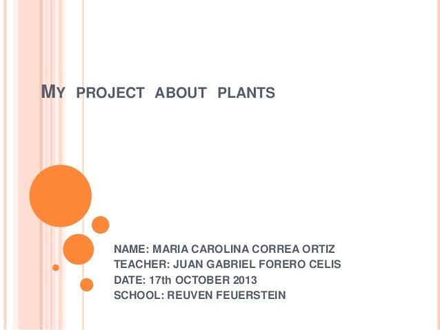MY  PROJECT ABOUT PLANTS  NAME: MARIA CAROLINA CORREA ORTIZ TEACHER: JUAN GABRIEL FORERO CELIS DATE: 17th OCTOBER 2013 SCH...