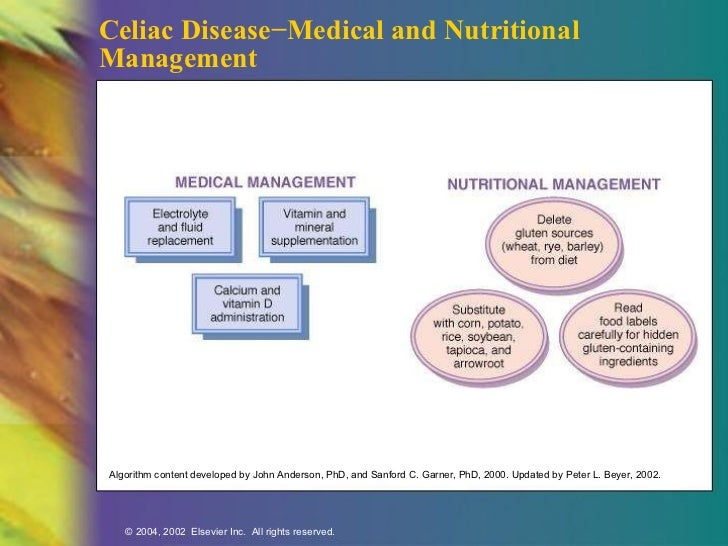 celiac disease research paper A position paper by the european society for pediatric  tion in infants and the  risk of developing coeliac disease (cd) during  future research.