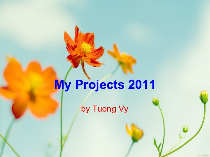 My Projects 2011    by Tuong Vy