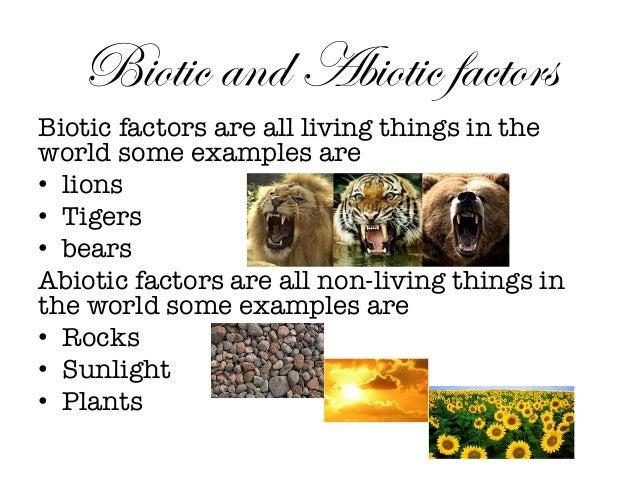 Biotic and abiotic factors biotic factors are all living things