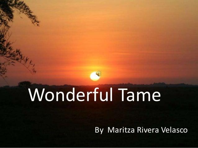 My town, Tame Por Maritza Rivera