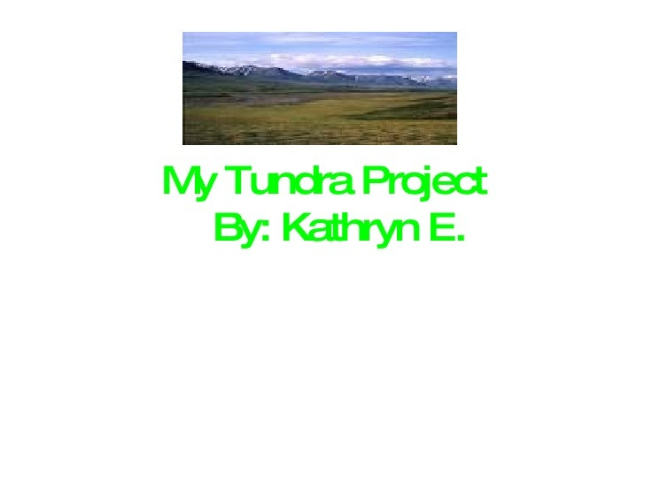 My Tundra Project   By: Kathryn E.