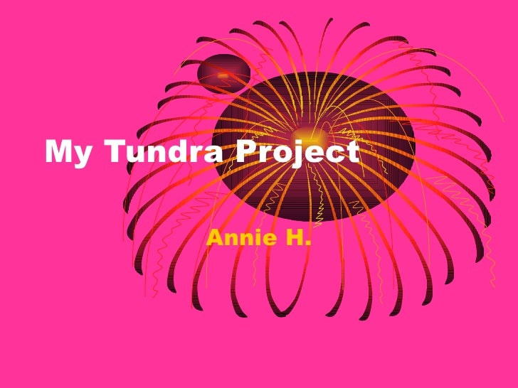 My Tundra Project Annie H.