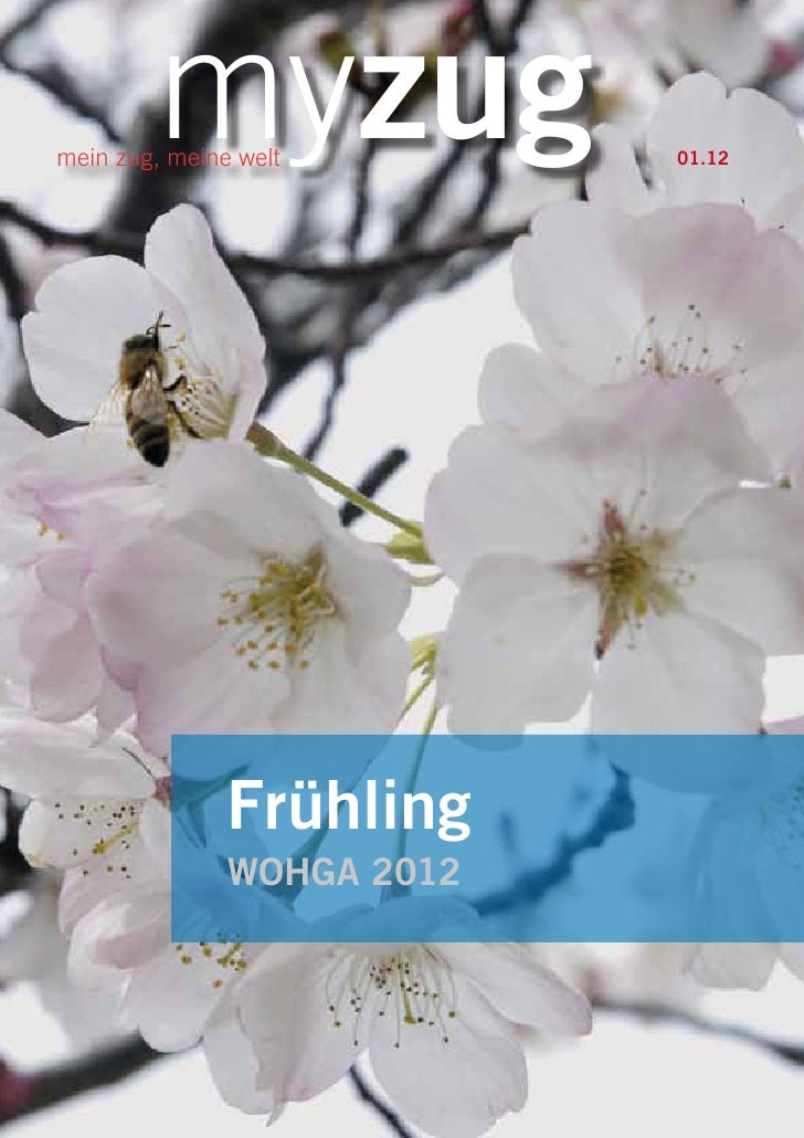 myzugmein zug, meine welt        01.12               Frühling               WOHGA 2012myzug 01.12                         1
