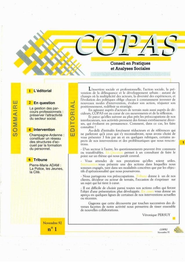 Conseil en Pratiques et Analyses Sociales  -Lyéditorial _I/ insertion sociale et profess/ ionnelle.  l'action sociale,  la...