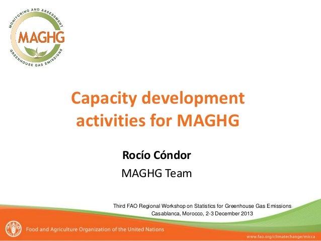 Capacity development activities for MAGHG Rocío Cóndor MAGHG Team Third FAO Regional Workshop on Statistics for Greenhouse...