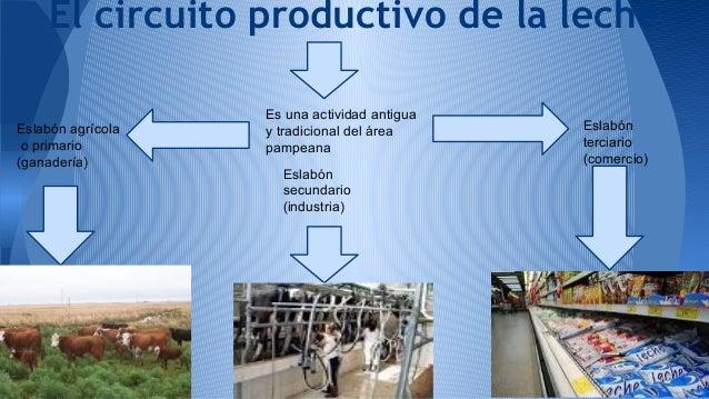 Circuito Productivo De La Leche : Nº luce y lau