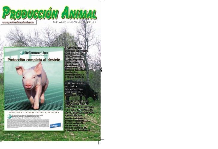 """AÑO XXVI - N.º 269 - NOVIEMBRE-DICIEMBRE 2011             Besnoitiosis             bovina: de """"vieja             desconoci..."""