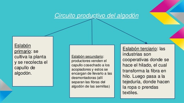 Circuito Productivo Del Algodon : Nº valen leo