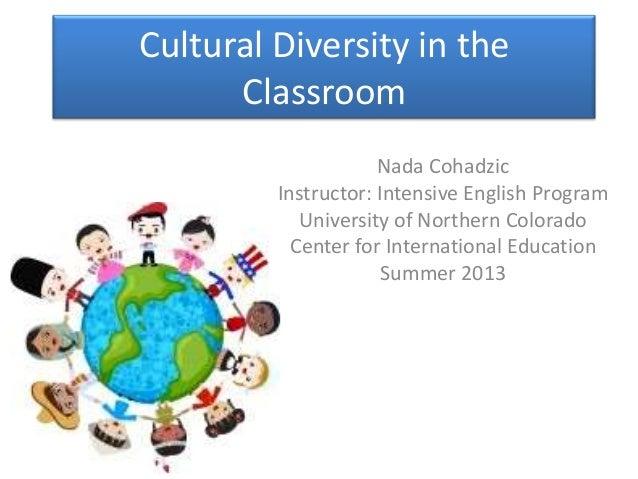 cultural diversity in schools essay