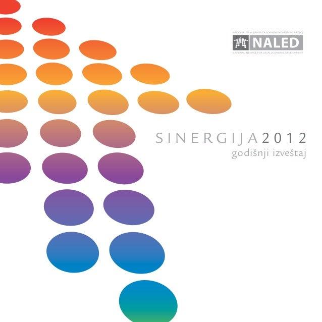sinergija2012      godišnji izveštaj