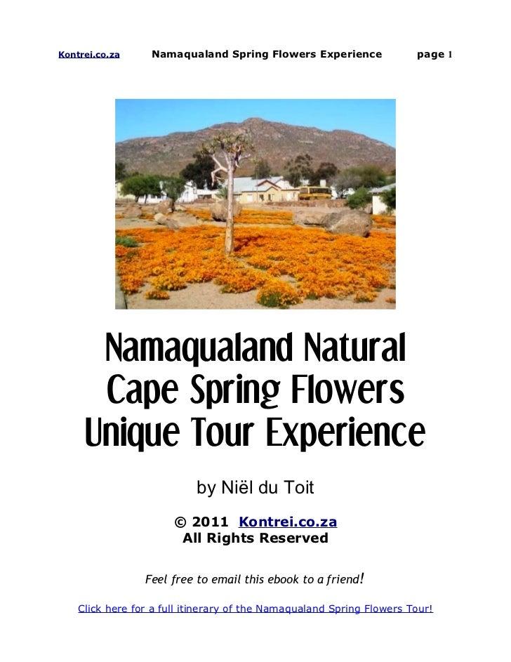 Namaqualand Natural Cape Spring Flowers Unique Tour Experience