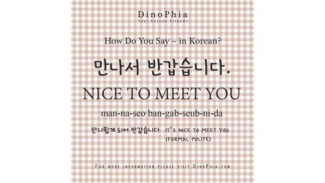 만나서 반갑습니다 nice to meet you Korean How Do You Say in Korean