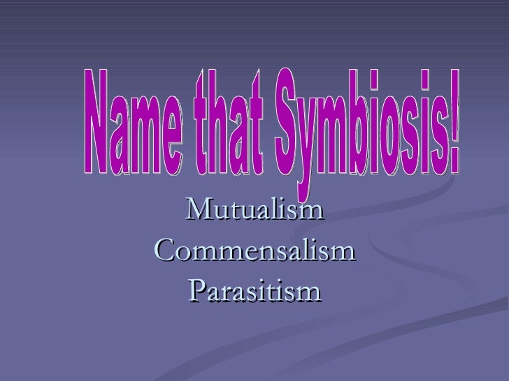 Mutualism Commensalism Parasitism Name that Symbiosis!
