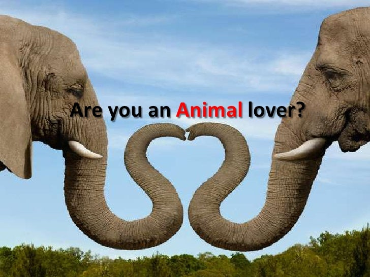 Are you an Animal lover?