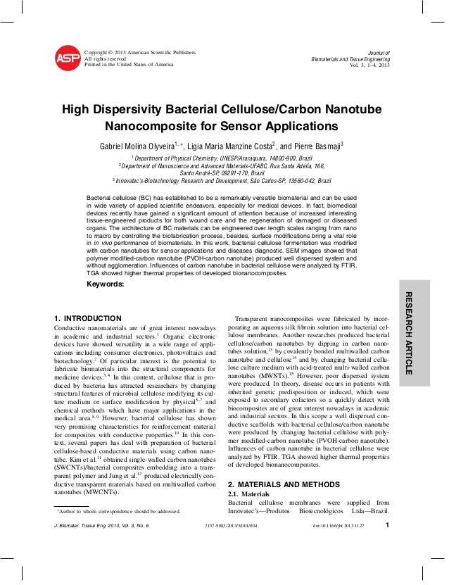 Nanotubo gabriel artigo