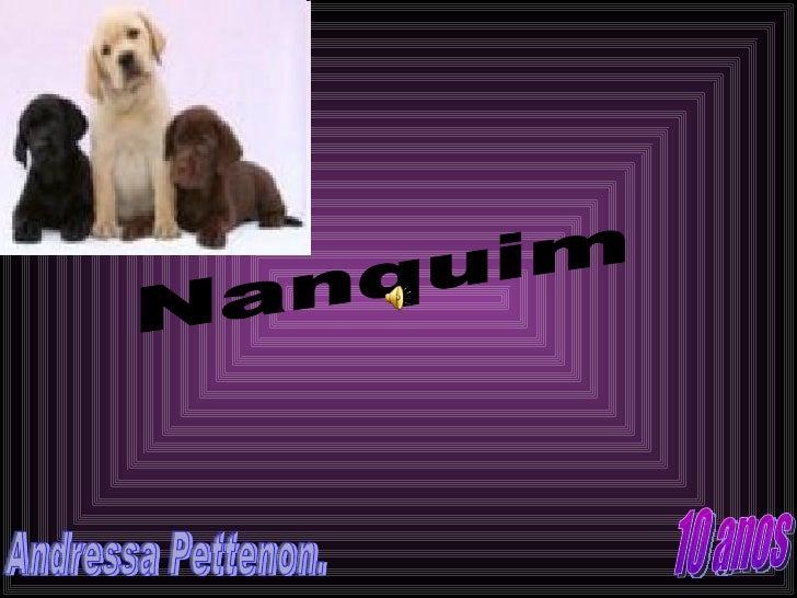 Nanquim Andressa Pettenon. 10 anos