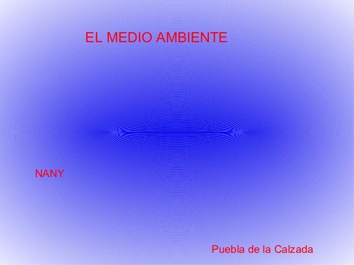EL MEDIO AMBIENTE NANY  Puebla de la Calzada