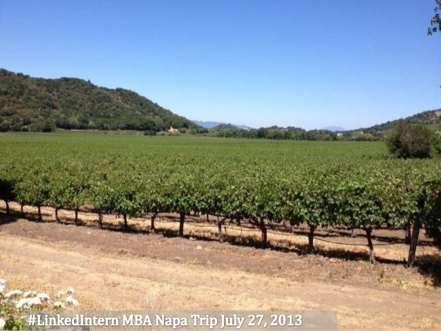 Our MBA LinkedIn Interns head to Napa
