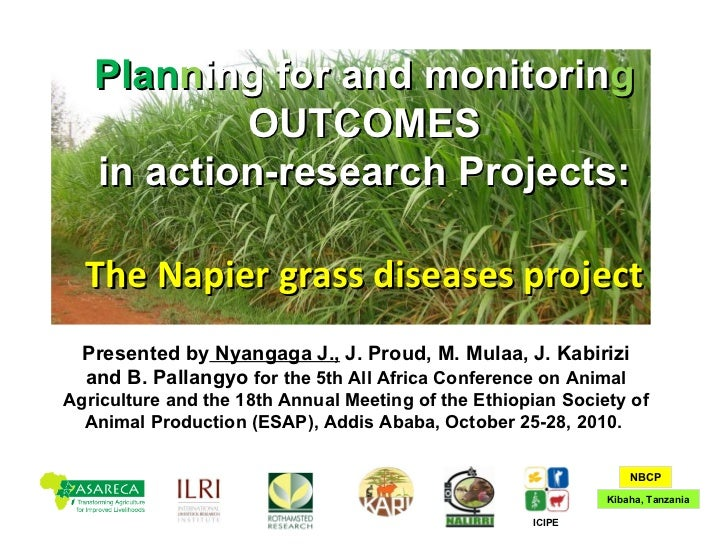 Planning for and monitoring outcomes in action-research Projects: The Napier grass diseases project