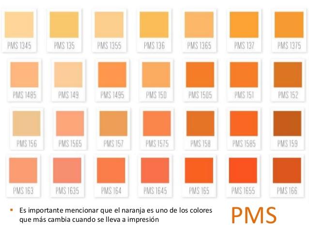 Paleta de colores comex related keywords paleta de - Paleta de colores bruguer ...