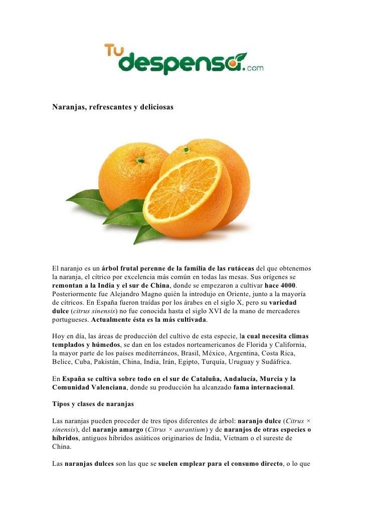 Naranjas, refrescantes y deliciosasEl naranjo es un árbol frutal perenne de la familia de las rutáceas del que obtenemosla...