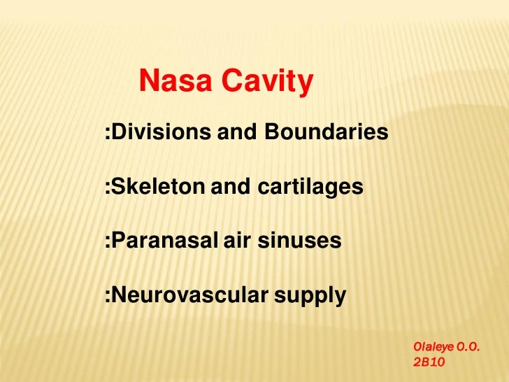 Nasa Cavity:Divisions and Boundaries:Skeleton and cartilages:Paranasal air sinuses:Neurovascular supply                   ...