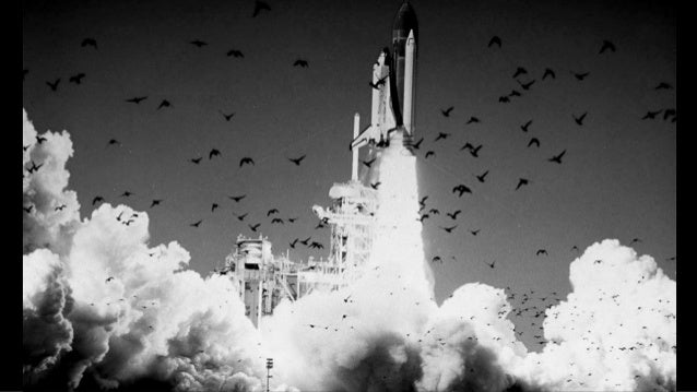 the challenger disaster explained essay Essays on challenger explosion we schools of thought that help explain this phenomenon the challenger disaster the challenger disaster it was a chilly.