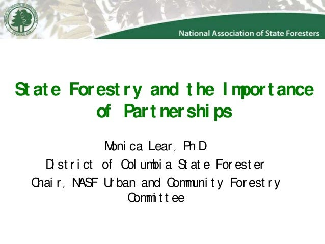 Nasf 2013 partners in community forestry final