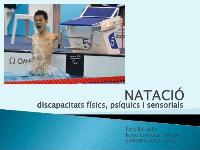discapacitats físics, psíquics i sensorials Pere Bel Sala Borja Carrascal Alvaro CAFEMN 2013-2014