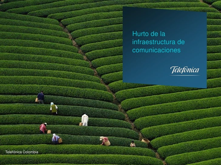 Natalia Guerra, Hurto de la infraestructura de comunicaciones
