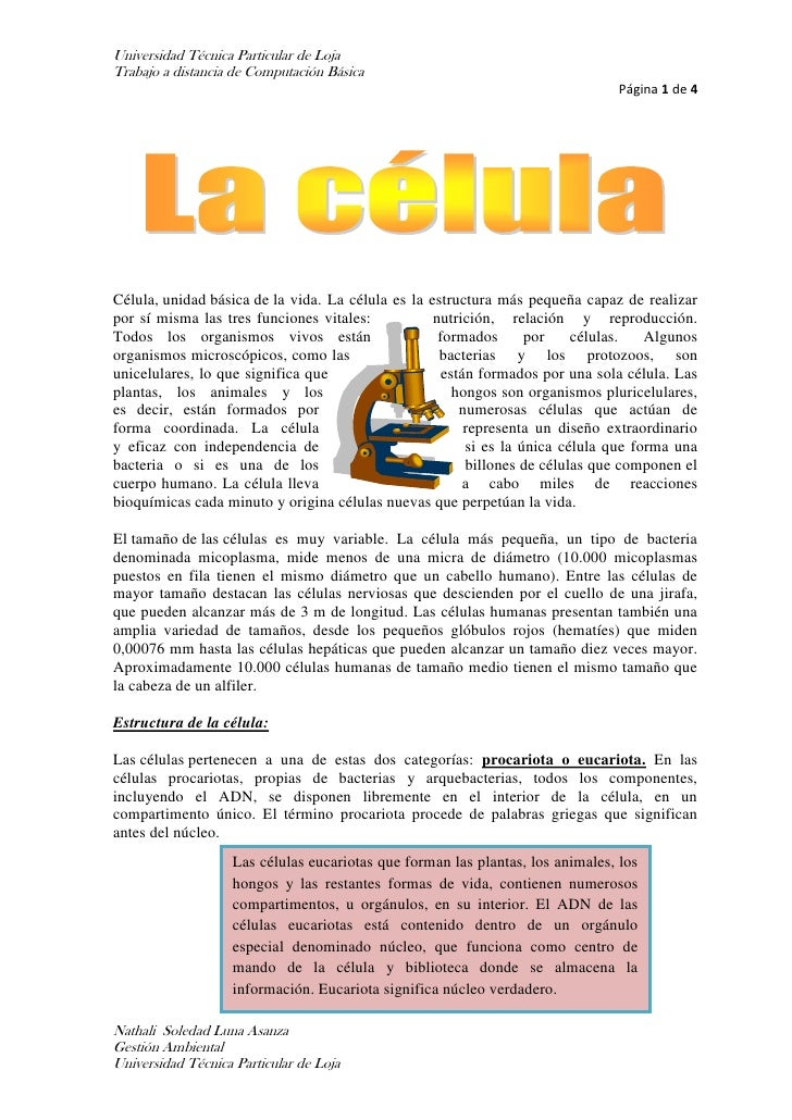 Nathali luna.docx (documento de word)