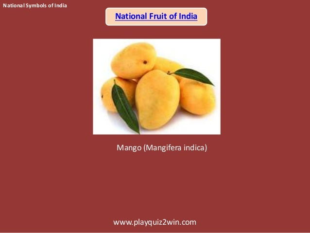 my favourite fruit mango for kids My favorite fruit 5 lines 011-40705070 or call me my favorite friut is mangoit is found in summer seasenit is very sweet and tastyit is in yellow colourit.