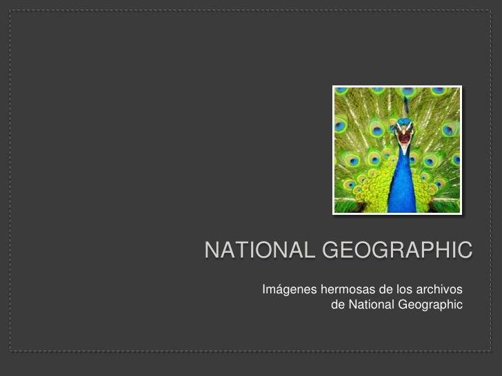 National geographic<br />Imágenes hermosas de los archivos de NationalGeographic<br />