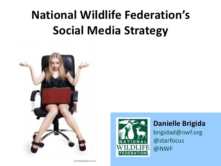 National Wildlife Federation's    Social Media Strategy                       Danielle Brigida                       brigi...