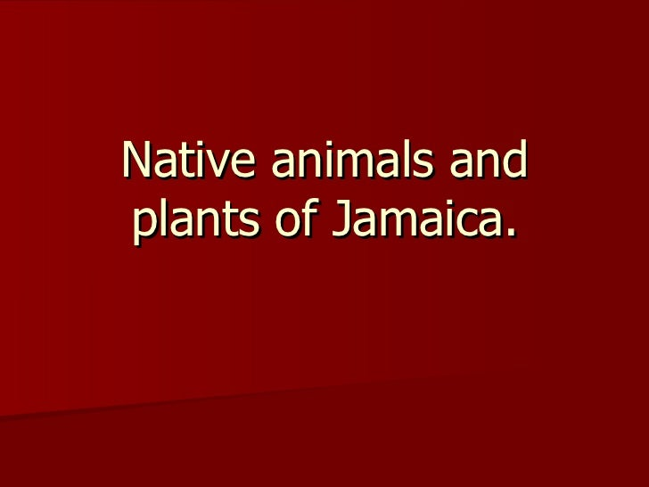 Native animals and plants of Jamaica.