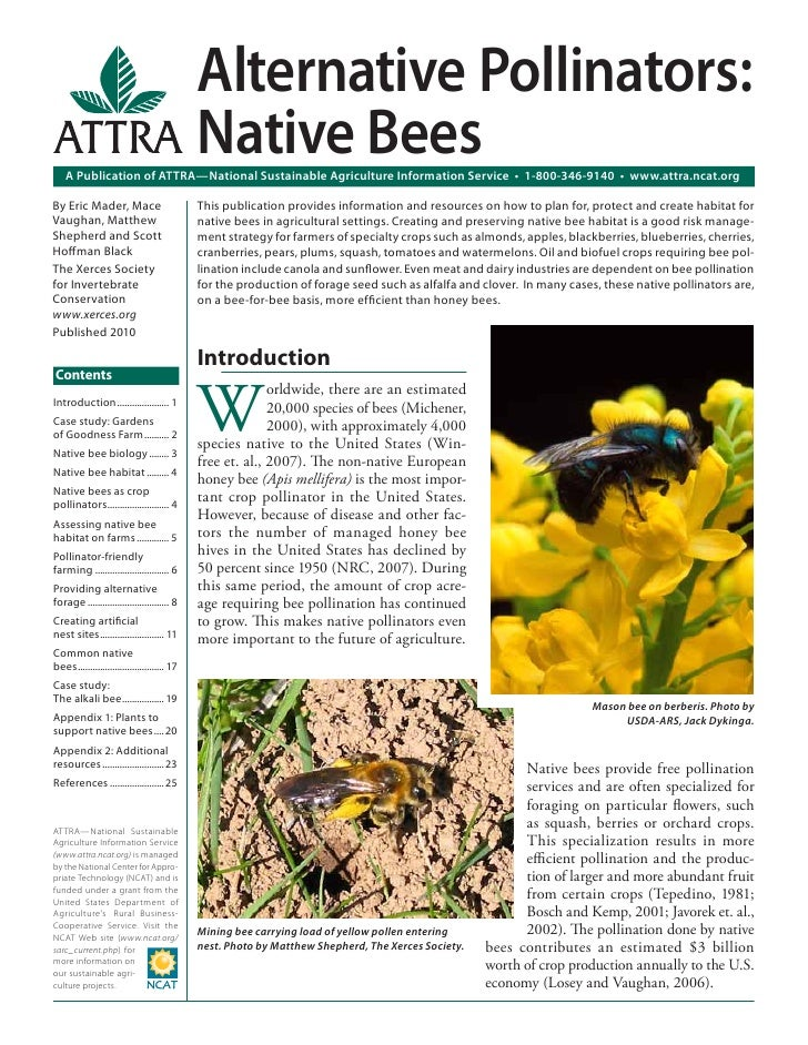 Alternative Pollinators:                                              Native Bees    A Publication of ATTRA—National Susta...
