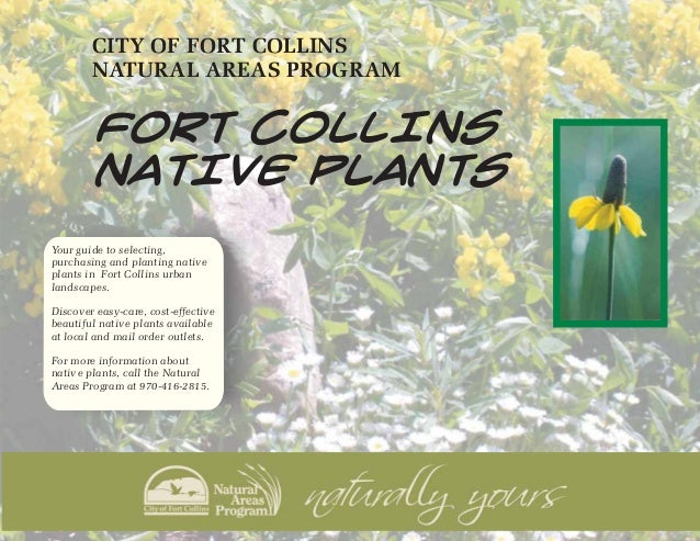 Fort Collins Native Plants - Fort Collins, Colorado