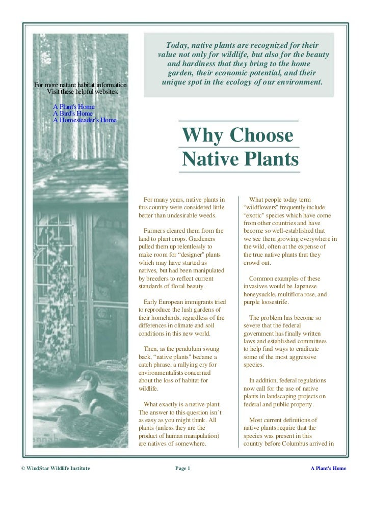 Today, native plants are recognized for their                                                  value not only for wildlife...