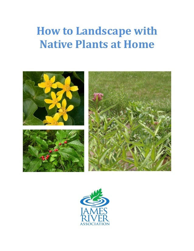 How to Landscape with Native Plants at Home - James River Association, Virginia