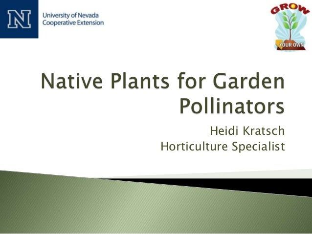 Grow Your Own, Nevada! Summer 2013: Native Plants for Garden Pollinators