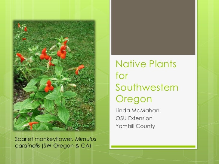Native plants for southwestern oregon