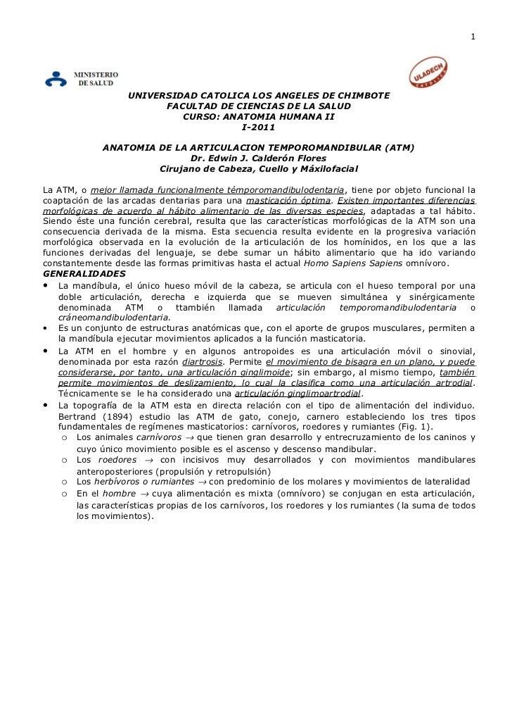 1                   UNIVERSIDAD CATOLICA LOS ANGELES DE CHIMBOTE                         FACULTAD DE CIENCIAS DE LA SALUD ...